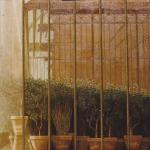 100cmx100cm, huile sur toile, 1989