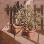 81cmx60cm, huile sur toile, 1986