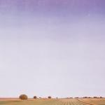 147cmx114cm, huile sur toile, 1996