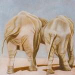 Eléphant, 30cmx30cm, huile sur toile, 1998