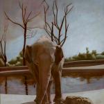Eléphant, 146cmX114cm, huile sur toile, 1998