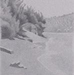 50cmx15cm , fusain et mine de plomb sur papier, 2004