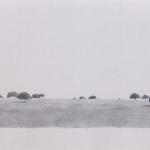 70cmx43cm , fusain et mine de plomb sur papier, 2004