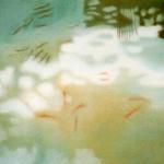 40cmX40cm, huile sur toile, 2006