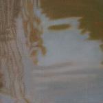 27cmx16cm, huile sur toile, 2007
