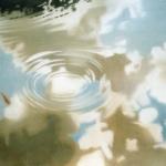 146cmx114cm, huile sur toile, 2006