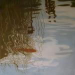 80cmx80cm, huile sur toile, 2006