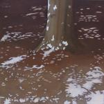 Arbres de Fonvert, 50cmx50cm, huile sur toile, 2015