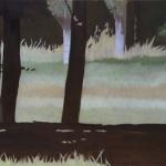 Arbres de Fonvert, 80cmx80cm, huile sur toile, 2015